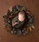 Canberra Photography - Canberra Newborn Photos